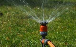 Как провести воду на участок для полива