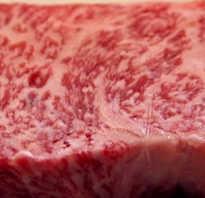 Как приготовить настоящий стейк