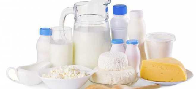 Как открыть молочный завод
