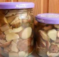 Как правильно консервировать грибы в домашних условиях