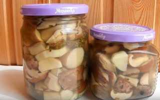 Как правильно приготовить грибы на зиму
