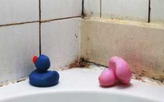 Как победить плесень в ванной