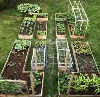 Как обустроить свой огород