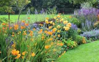 Как посадить красивый цветник