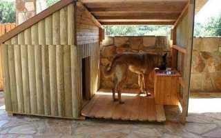 Как построить будку для лайки